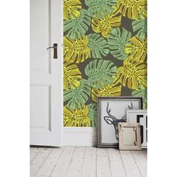 Vliesbehang Monstera groen geel  122x122 cm