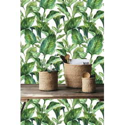 Zelfklevend behang Bananenblad groen wit 122x275