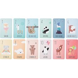 Donkey Products 12 growing cards - De eerste 12 maanden