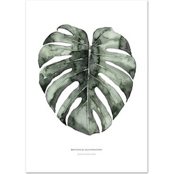 Poster 'Urban Monstera' A3