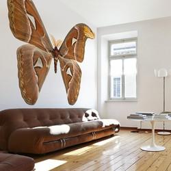 Atlasvlinder - 300x300 cm (BxH)