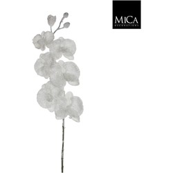 Mica Decorations orchidee maat in cm: 76 wit frosted