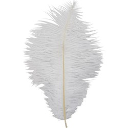 Veer struisvogel wit per 5 stuks