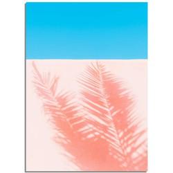 Palm blad schaduw op muur - Roze blauw poster - A4 + fotolijst zwart