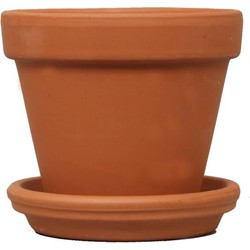 Terracotta pot met schotel