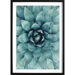 Cactus Flower Poster (21x29,7cm)