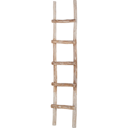 Ladder Montendre - massief eucalyptushout, Eva Padberg Collection