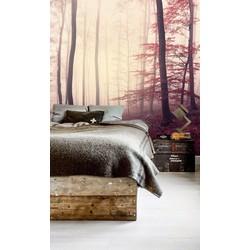 Vliesbehang XL Bos mistig roze 250x250 cm