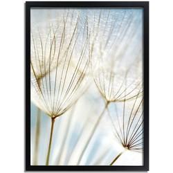 Dandelion Paardebloem poster DesignClaud - Botanische poster- A3 + fotolijst zwart