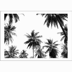 Underneath the palm trees (21x29,7cm)
